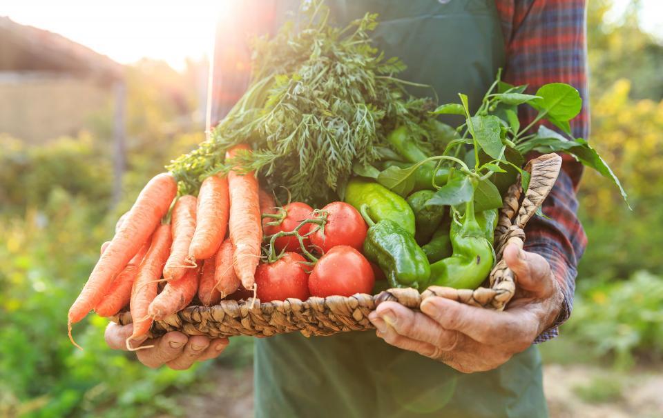 Faire le plein d'antioxydant